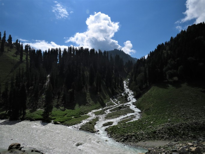 A stream flowing to the Sind river in Kashmir